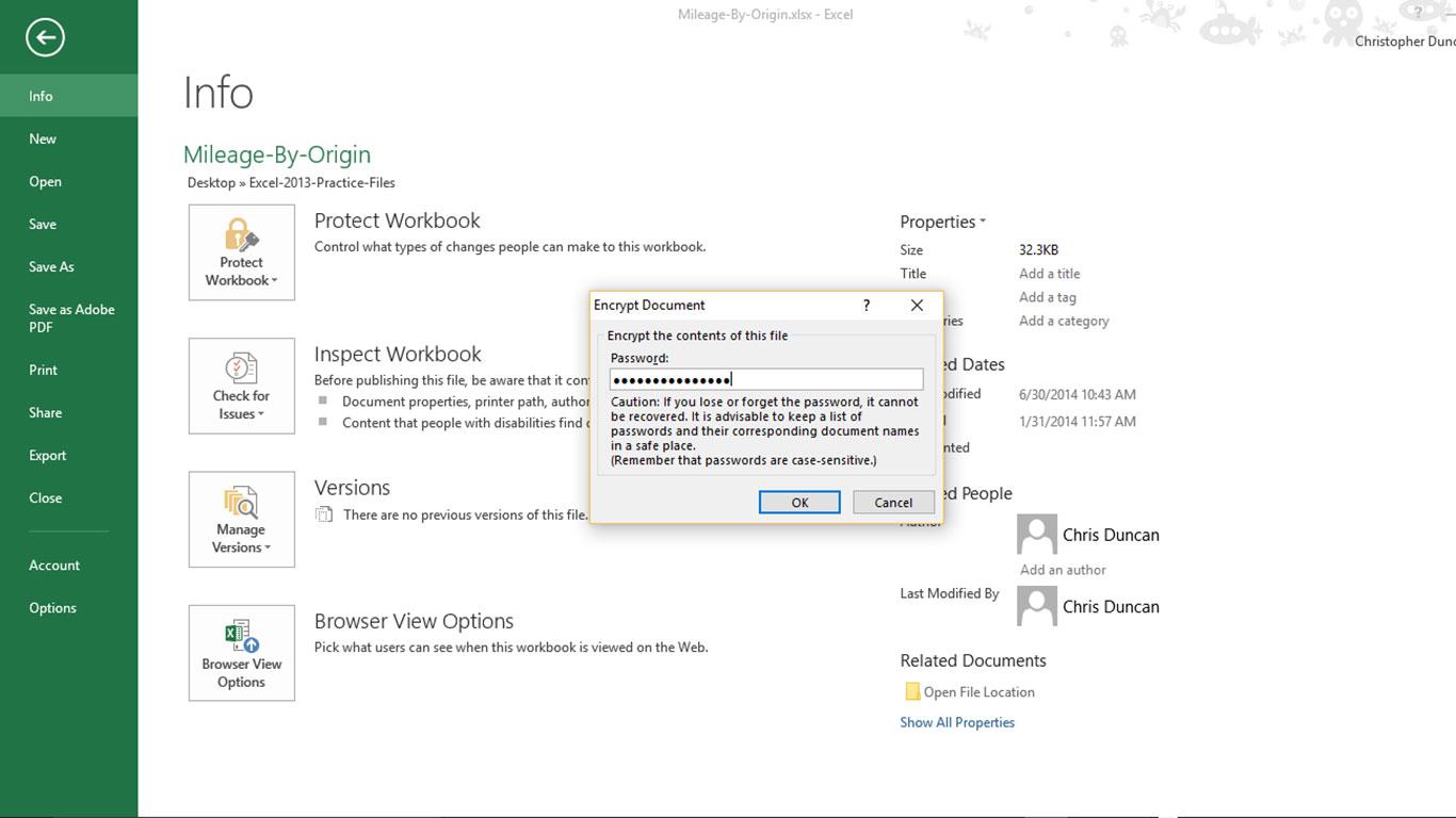 Excel Password Encryption